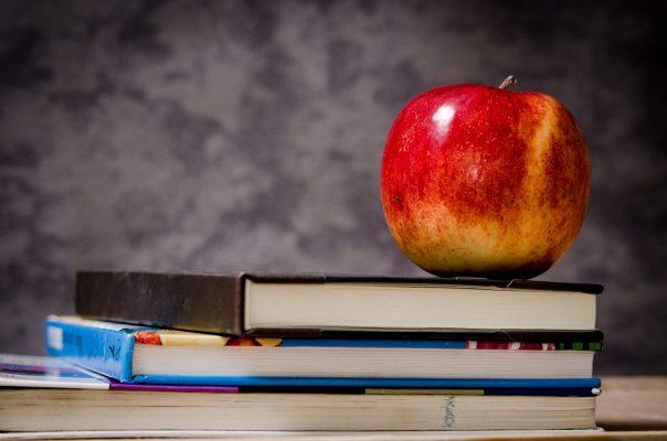 apple-blur-book-stack-256520 (1)